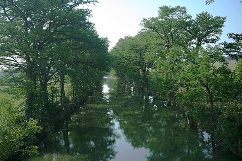 Texas Cypress Cast Cooling Shadows Over The Crystal-clear Upper Medina River At Medina, Texas.