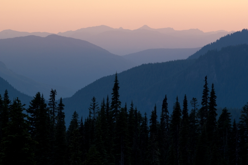 Nisqually River Valley @ Sunset (mt. Rainier Np)