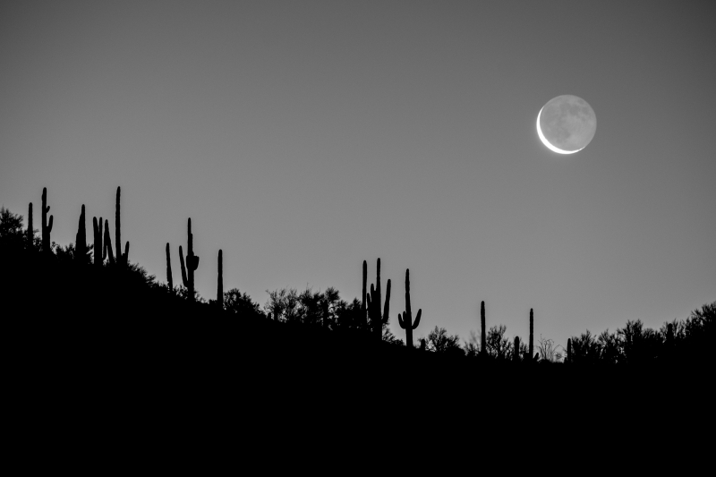 Crescent Moon In The Desert