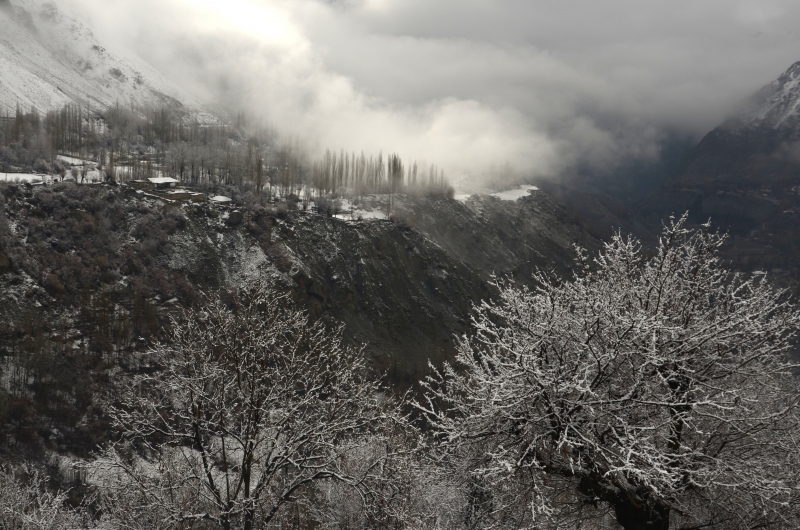 Winter Wonderland Shabronze Owir Valley