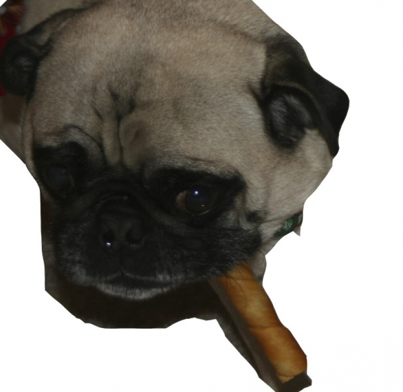 Charles Loves A Good Cigar