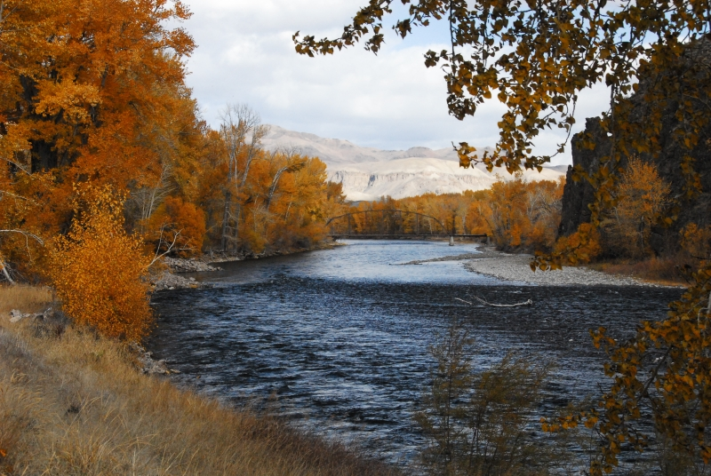 Fall On The Salmon River