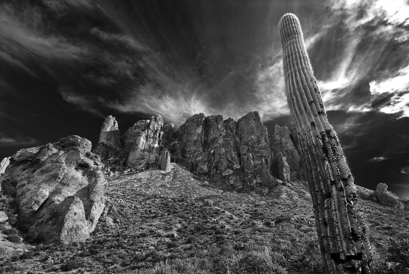 Cactus And Superstition Mountains