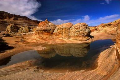 Reflections At Coyote Buttes
