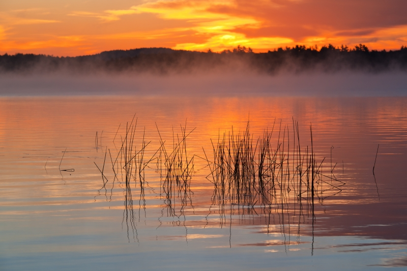 Early Morning Fog On Massabesic Lake