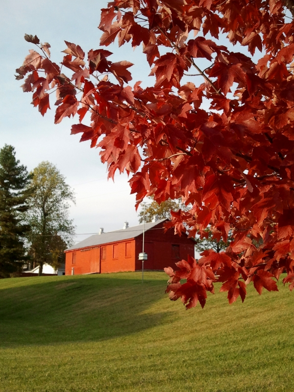 Burning Tree And Barn