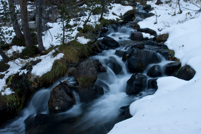 Stream Mt Dana