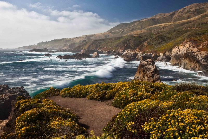 Early Summer Afternoon-big Sur