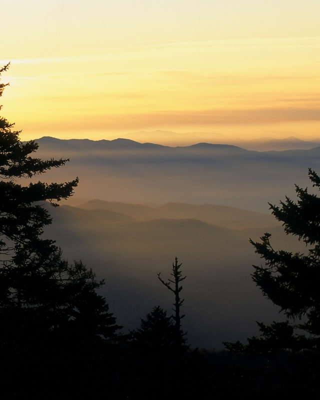 Sunrise At Clingmans Dome