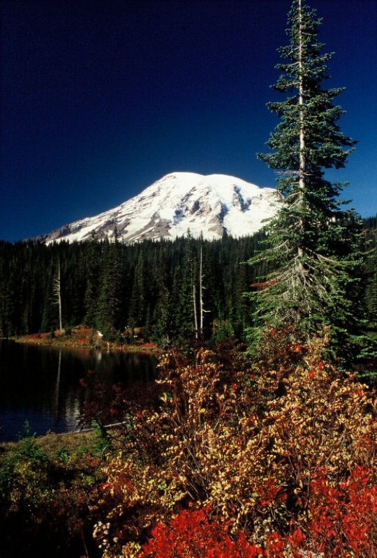 Fall On Mt. Rainier