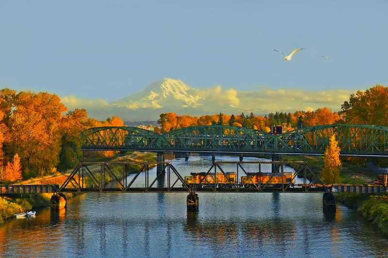 Fall In Tacoma, Wa