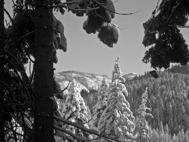 Cooper And Pinecrest Peaks