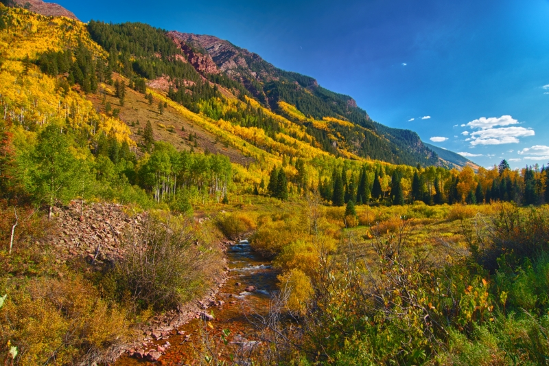 Falls Colors In Aspen, Colorado