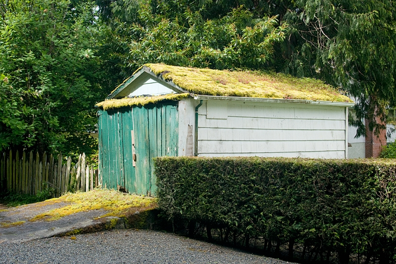 Moss-covered Garage