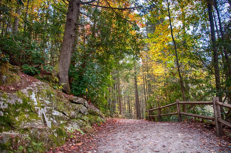 Discover The Fall Trails
