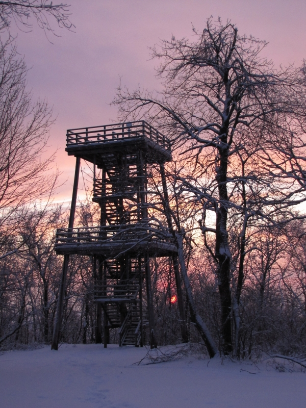 Tower In A Winter Sunset