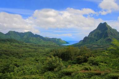 Belvedere Lookout, Moorea, French Polynesia