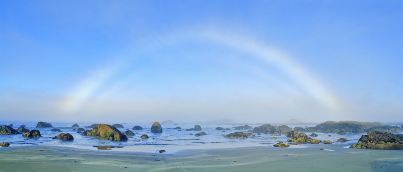 Fogbow On The Olympic Coast