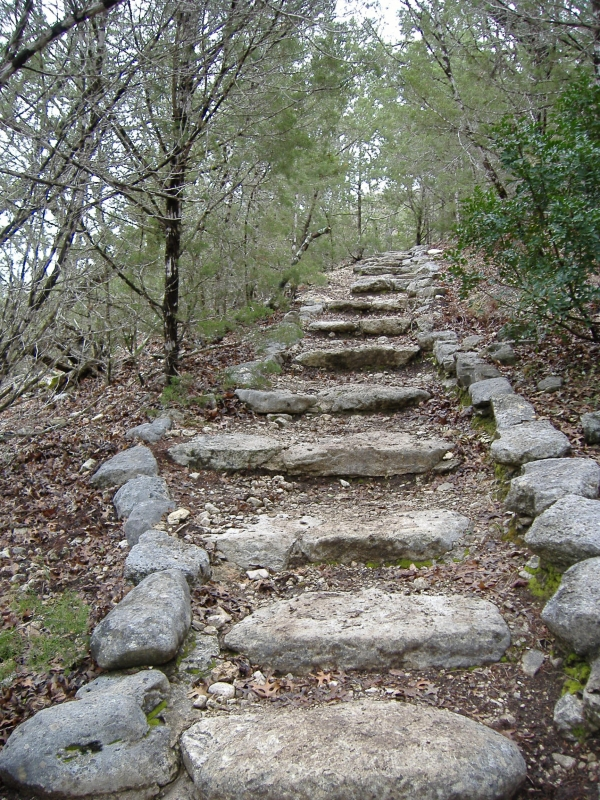 Stairs At Lost Maples