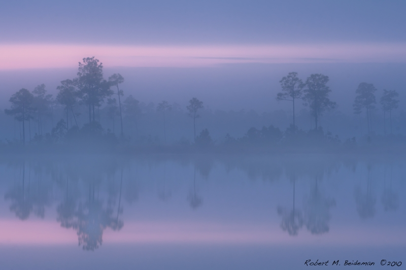 Fog Over Pine Glades Lake