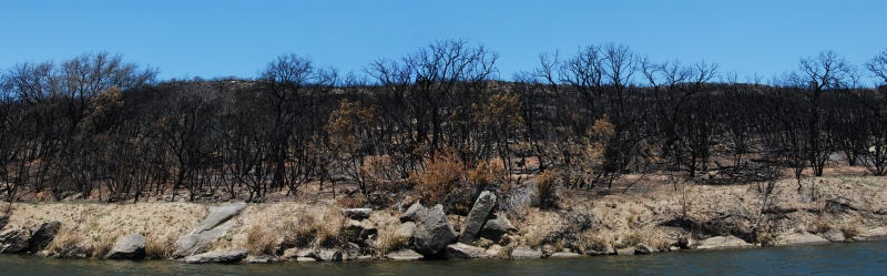 Brazos River Fires
