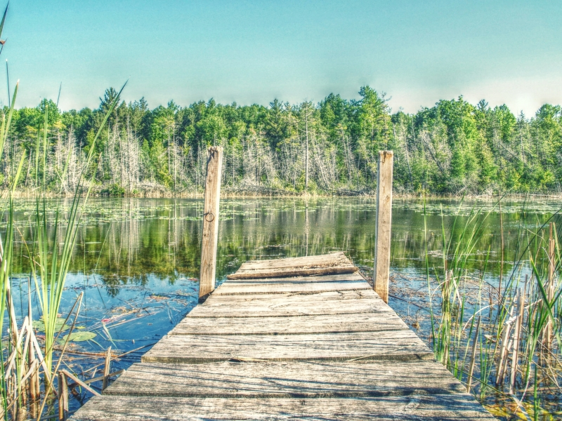 Sitting On The Dock Of The River