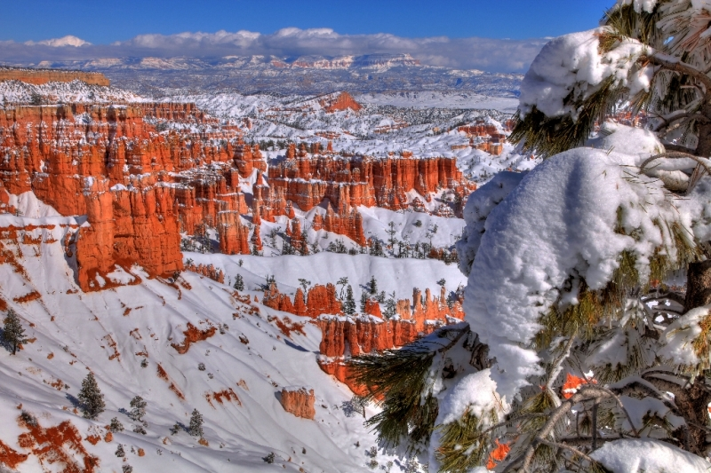 Bryce Canyon N.p., Winter