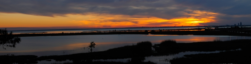Eastern Shore Panoramic