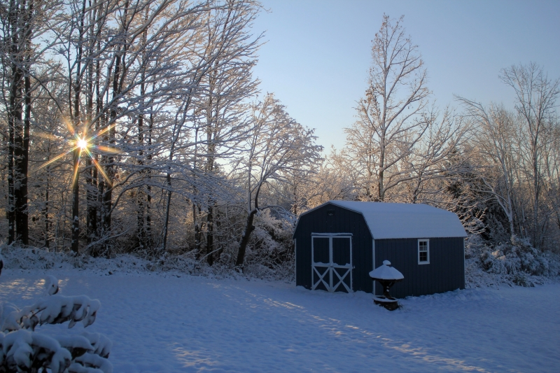 Country Winter Morning