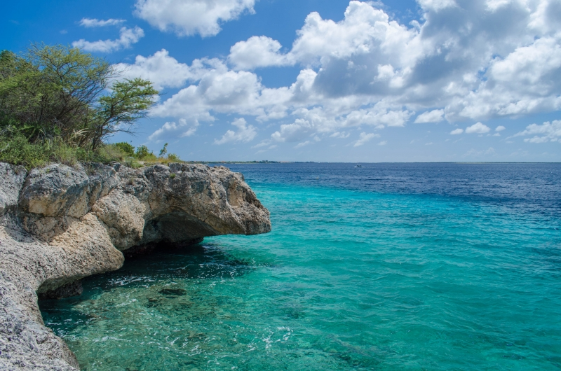 Bonaire Diving Spot