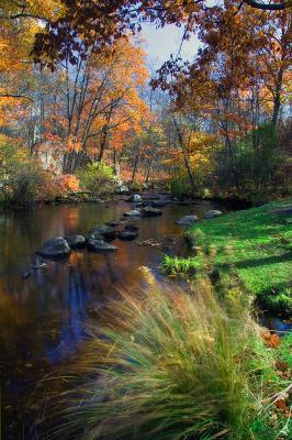 The Cross River At Ward Pound Ridge Reservation