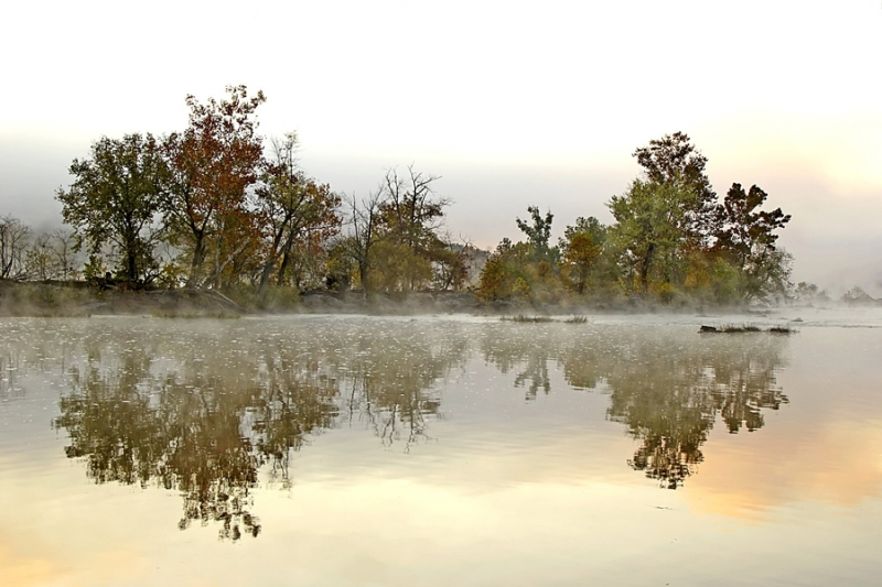 Foggy Morning Reflections
