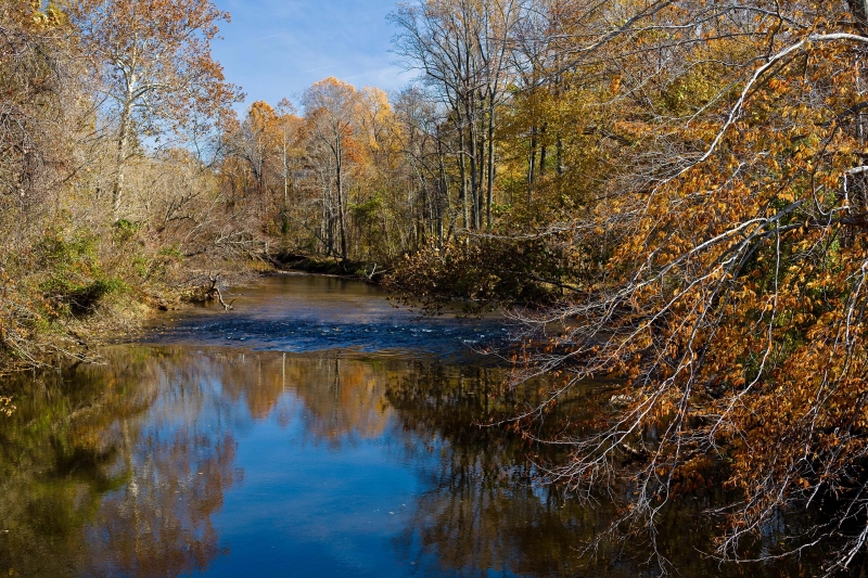 Fall Colors Little Patuxent River