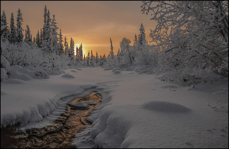 Dawn In Lapland ….