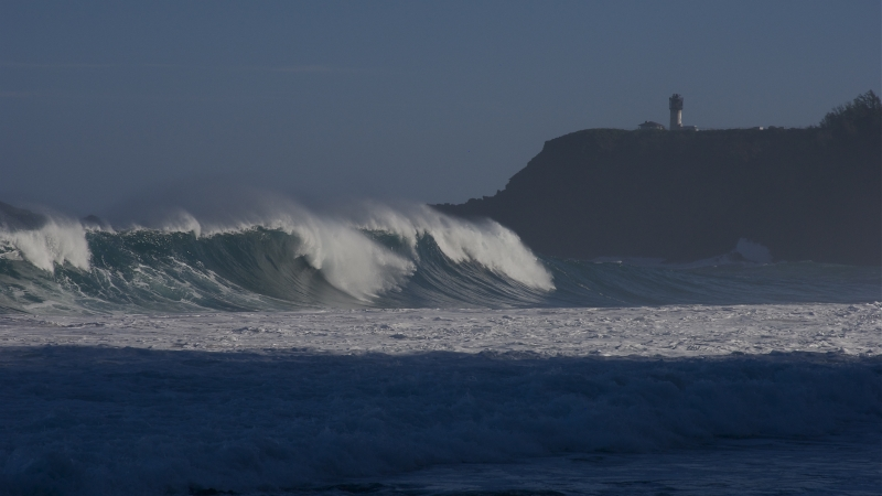 Early Surf