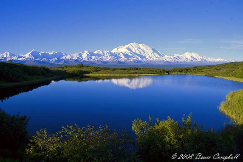 Early Morning At Mt. Mckinley