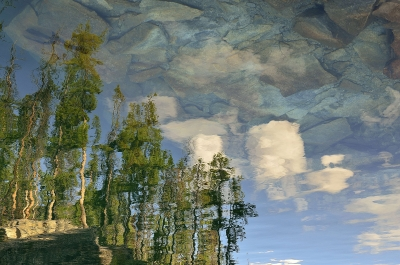 Impresionist Reflections