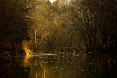 Pm Light On The Harpeth River
