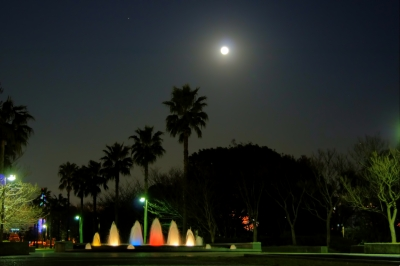Fountain And Moonlight