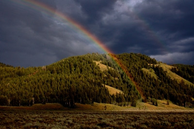 Rainbow In A Storm