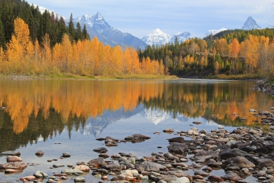 Autumn Along The Middle Fork Of The Flathead River
