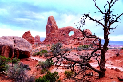Evening At Arches