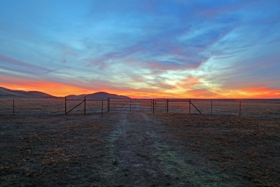 Rush Ranch Winter Sunrise
