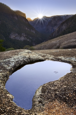 Yosemite Puddle