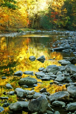 Fall Reflections On Penns Creek