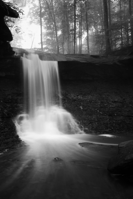 Blue Hen Falls In Black And White