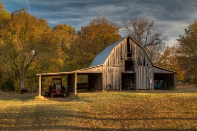 Barn In Golden Light