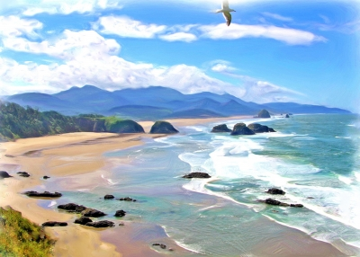 Bird's Eye View Of The Oregon Coast