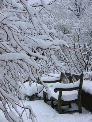 Garden Bench Padded With Snow