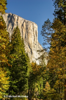Elcap Profile In The Fall